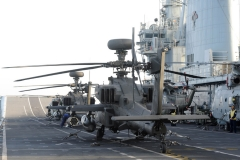cougar-13-heli-3