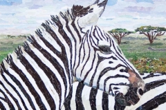 Zebra-ngorongoro