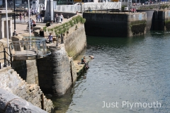 Just-Plymouth-01a