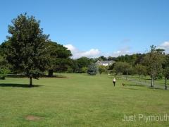 central-park (3)