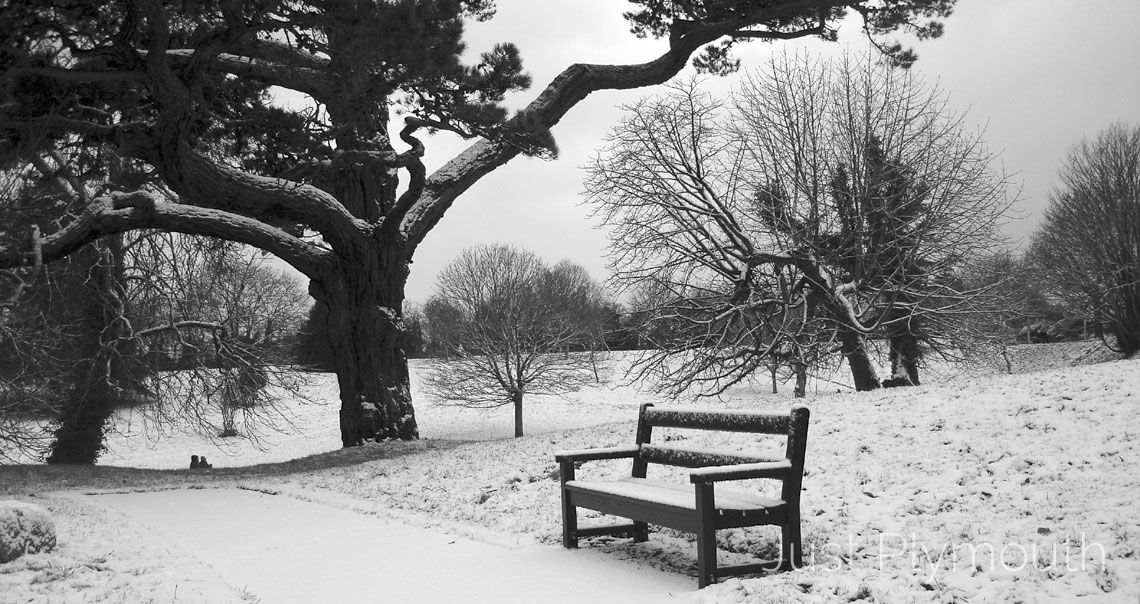 Plymouth Central Park in Winter