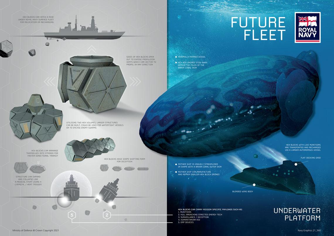 Royal Navy Future Fleet